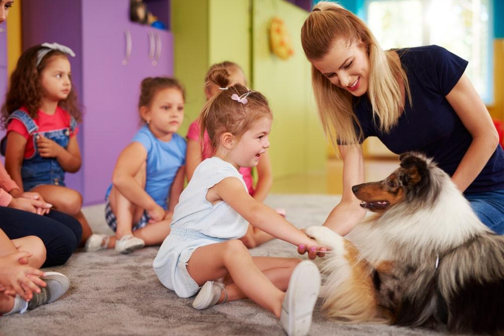 Pet Therapy per le lingue suisseup