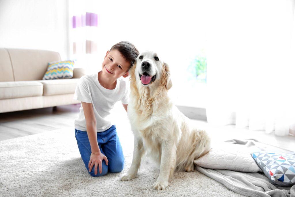 percorsi di pet therapy
