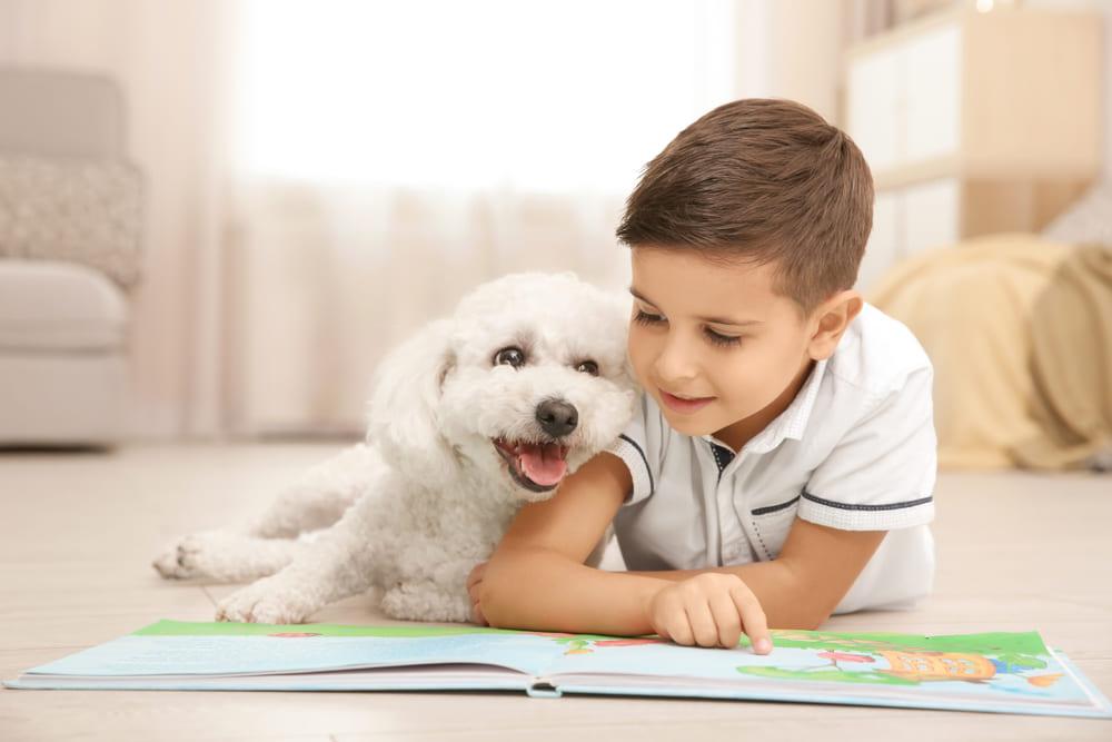 pet therapy percorsi e formazione
